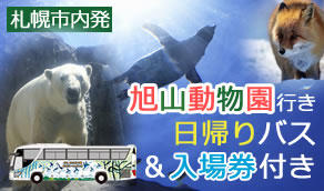 人気の旭山動物園へ行こう!