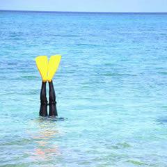 ダイビング初心者でも沖縄の海なら楽しめる!