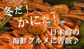冬だ!かにだ!日本海の海鮮グルメに舌鼓♪
