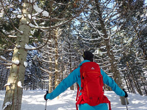 ニセコスキー場が人気の4つの秘密!出かけるならツアー旅行がおすすめ!