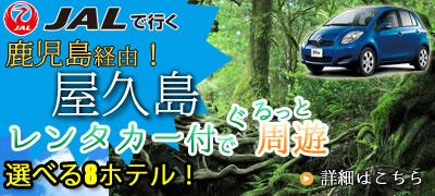 レンタカー付き選べる8ホテル屋久島