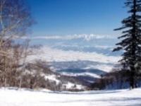 憧れのパウダースノー!北海道のスキー場