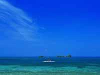 青い海!沖縄でやりたいアクティビティとは?
