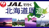 選べるホテル周遊北海道