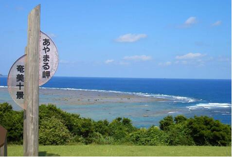奄美大島特集
