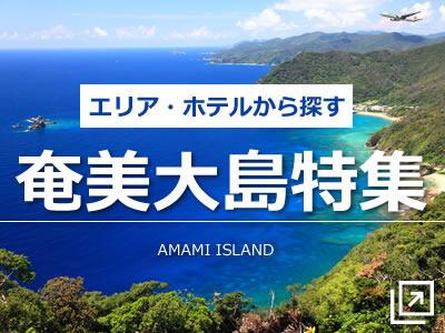 エリア・ホテルで選ぶ奄美大島旅行