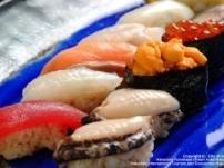 函館 寿司