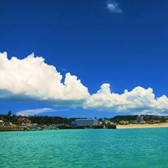 沖縄でダイビングするならどの時期がおすすめ?