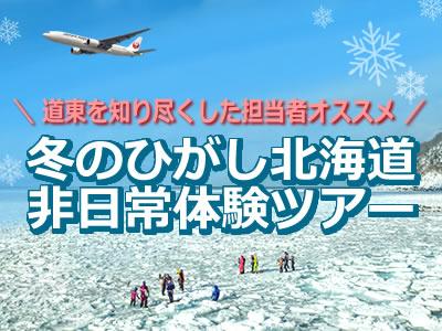 冬のひがし北海道(知床・網走・釧路)体感ツアー特集