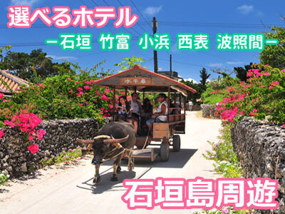 石垣島★人気の選べる周遊プラン