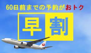 九州離島JAL早割60ツアー