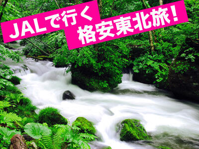 JALで行く★格安東北旅行