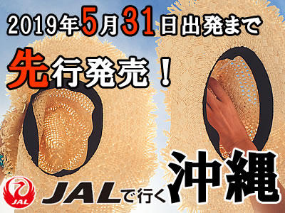 2019年6月末出発まで発売開始!本島・石垣・宮古・久米