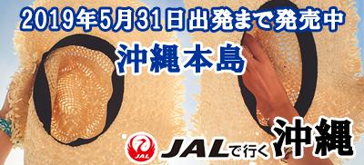 2019年5月31日出発まで発売開始!沖縄本島