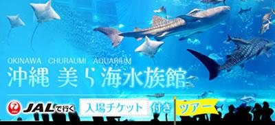 美ら海水族館チケット付沖縄ツアーSALE!!