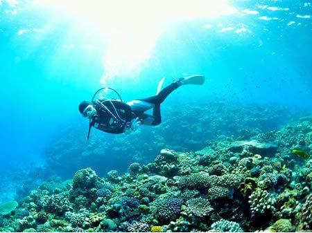 okinawa_diving3.jpg