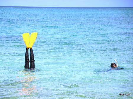 okinawa_diving4.jpg