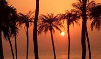 南の楽園<br>徳之島旅行・ツアー
