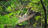 日本三大秘境「祖谷渓谷」を見に行く!祖谷温泉2~4日間