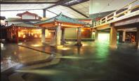 JALで行く!砂蒸し温泉で有名な「指宿温泉」