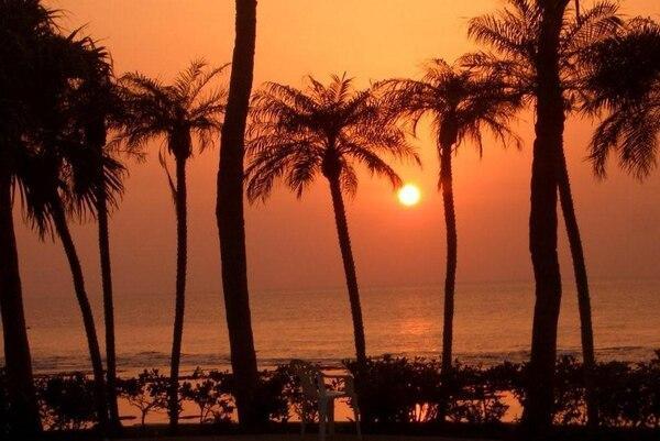 南国「徳之島」の嬉しい朝・夕食付ツアー