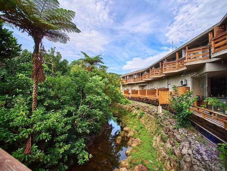 西表ジャングルホテルパイヌマヤ
