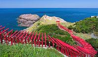 海と緑、赤の鳥居のコントラストが美しい「元乃隅稲成神社」