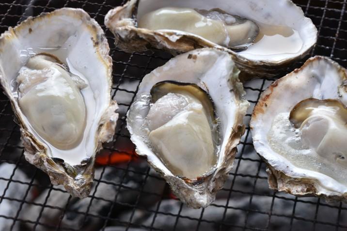 量 牡蠣 収穫