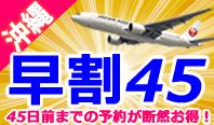 <沖縄・11月出発まで発売中!>45日前までの予約が断然お得!