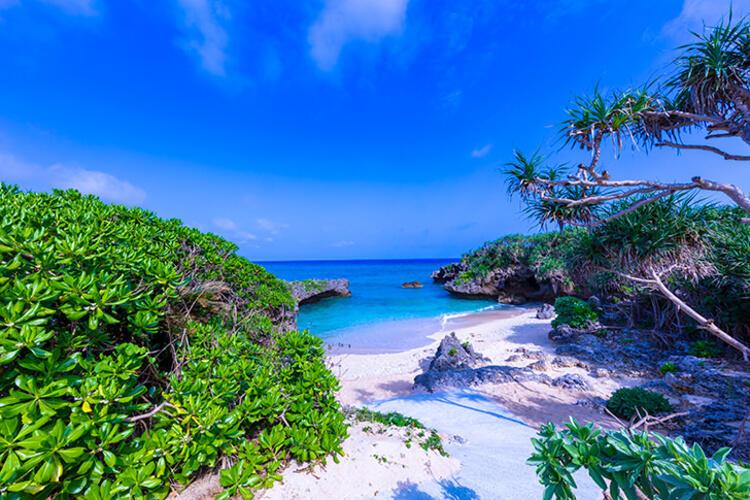 沖縄本島(恩納村)