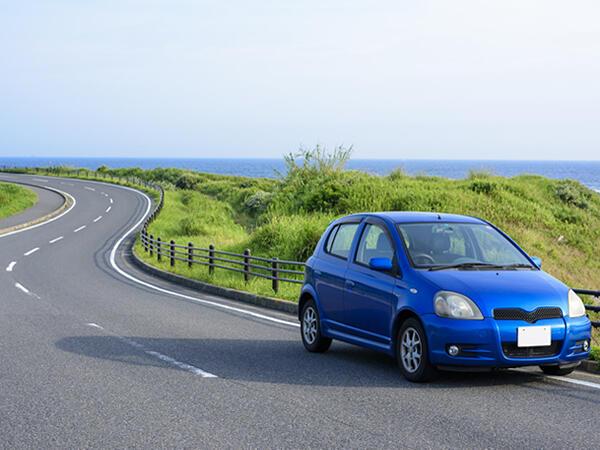 奄美大島をレンタカーでぐるり♪